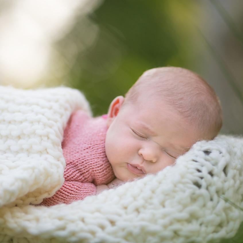 Grosse Pointe Newborn Outside