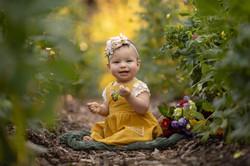 Grosse Pointe Baby Milestone Photo session