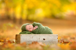 Fall Outdoor Newborn Photo Shoot