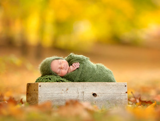 October Born - Metro Detroit Outdoor Newborn Photo Session