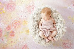 Detroit Newborn Photographer