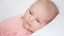Baby Hazel's Pretty in Pink Newborn Photos | Grosse Pointe Newborn Photographer