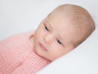 Baby Hazel's Pretty in Pink Newborn Photos | Grosse Pointe Newborn Photographer