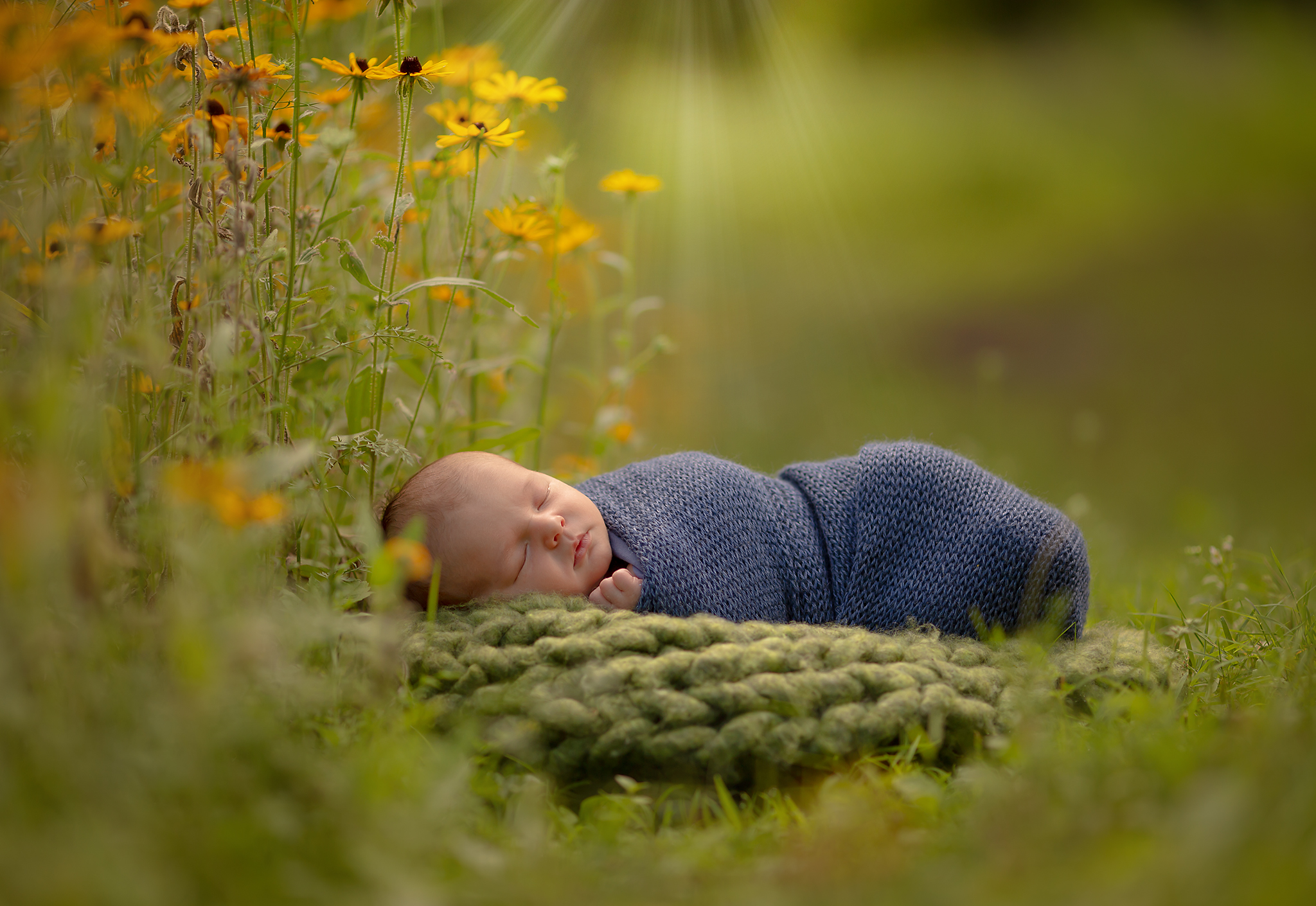 Metro Detroit Outdoorn Newborn Photography