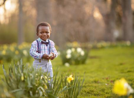 Four Seasons Newborn and Milestone Photography