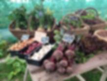 Etal d'une vente à la Ferme de TANGA avec des légumes bio et de saison