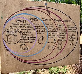 Schéma du zonage en Permaculture