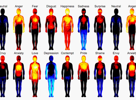 Emotions, feelings and the body