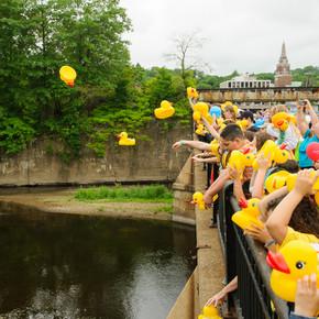 Jumbo Duck Race