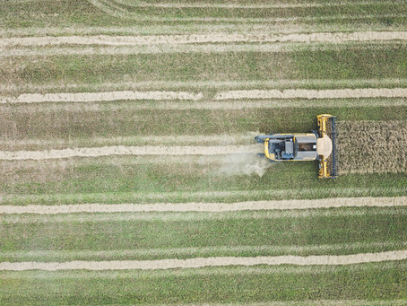 Greenhouse Gases can be Curbed from Rice Agriculture