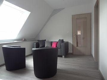 Gite à l'aigle Niederschaeffolsheim, Haguenau, Alsace, 3 chambres, tout équipé, wifi - photo du salon