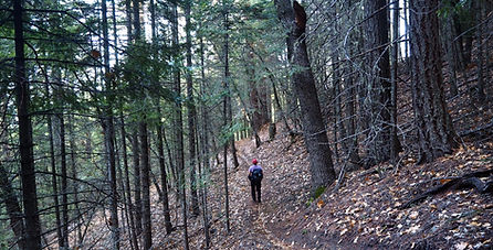 Isabelle Spring Trail-copyright 2019 Bru