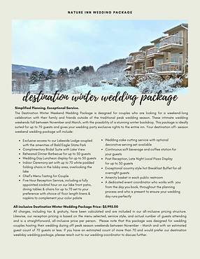 Winter Wedding Package PNG.png