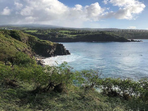 Exploring the Island of Maui During Wintertime