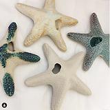 alb.ceramique_etoile_de_mer_2020.png
