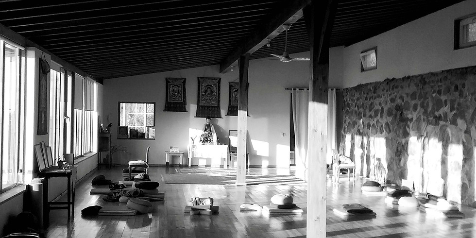 One and a half day online zen meditation retreat
