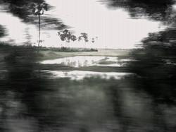 P010109_08.01