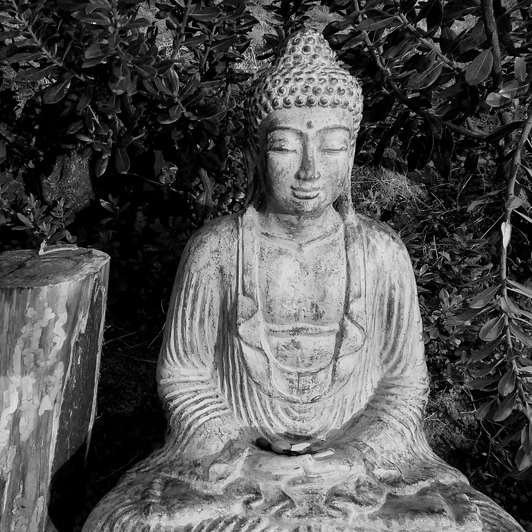 8 day silent zen meditation and yin yoga retreat in algarve, portugal