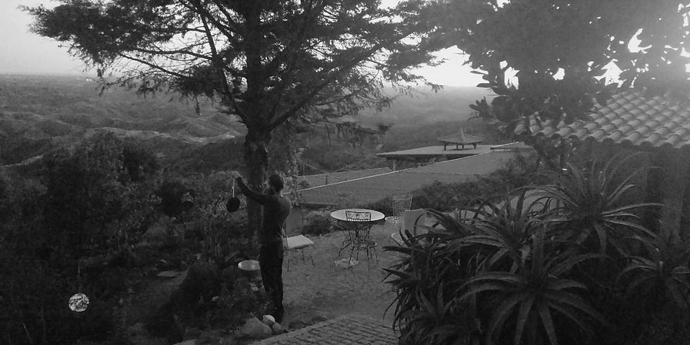7 day silent zen meditation and yin yoga retreat in algarve, portugal