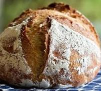 Sourdough bread 天然酵母パン