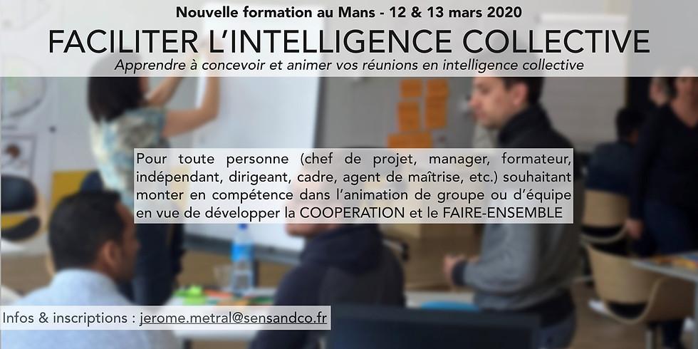 "FORMATION  ""Faciliter l'intelligence collective - Niv 1"""