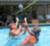 Volley4-280x260.jpg