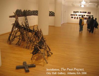 Peat Project