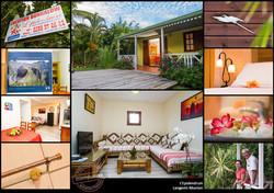 LEpidendum_location_bungalow_Langevin_Réunion_photos_Thierry_Hoarau