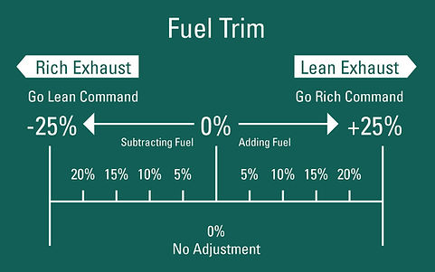 Fuel Trim Info