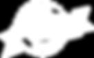 wilsons-logo.png
