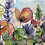 Thumbnail: Wildflower Garden 3