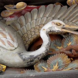 wood-food-seafood-fish-japan-invertebrat