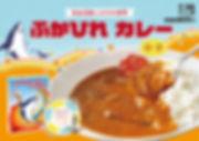 ふかひれカレーA4.jpg