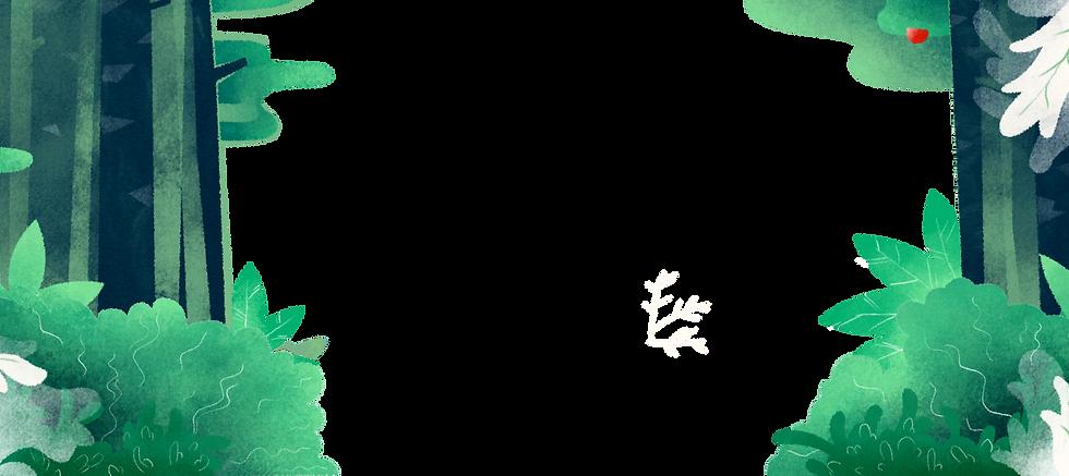 Illustrted%20forest%20background_edited.