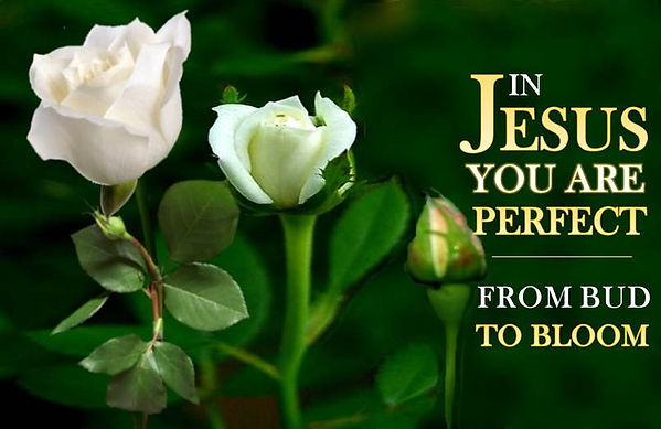 In Jesus, You Are Perfect from Start to Finish.jpg