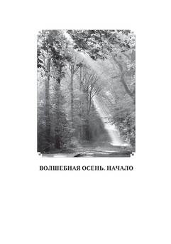 1913_Певень_блок_print_3.jpeg