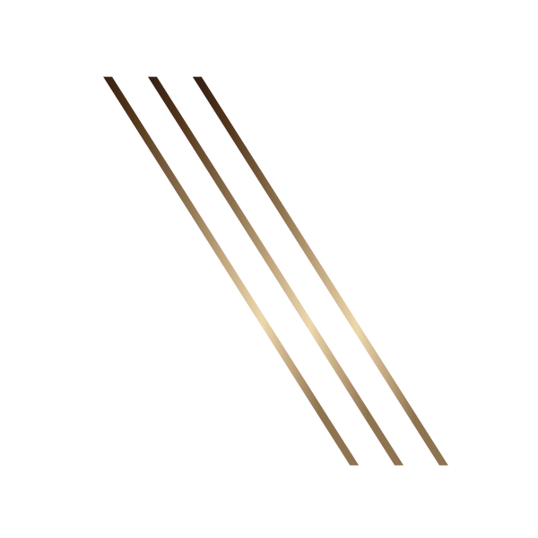 Linear Icons - metallic-10.png