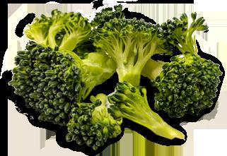 broccoli-shadow.png