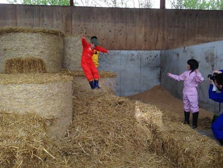 酪農家の子供の遊びって