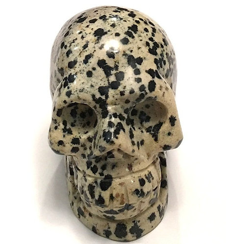 Activated Dalmatian Jasper crystal Skull Metaphysical Crystals Astral Travel