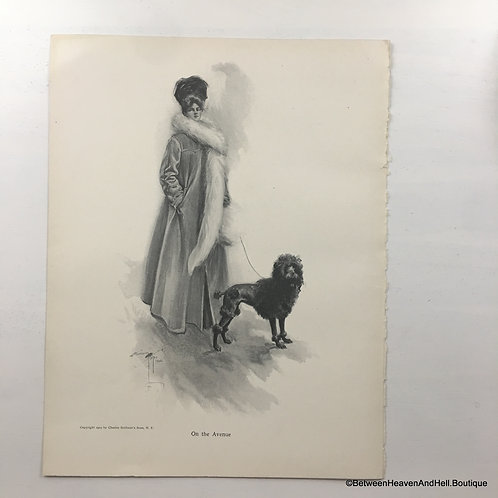 1903 Antique Standard Poodle Dog Print Edwardian Woman, Harrison Fisher Art