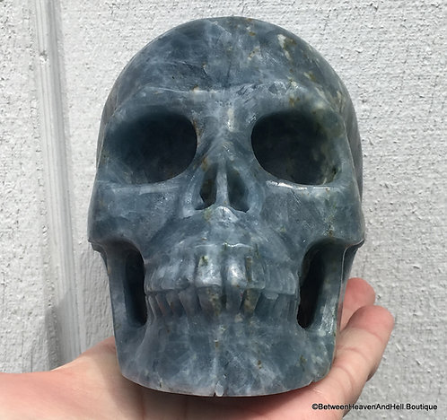 2.9Lb Large Blue Lemurian Calcite Skull Read the Akashic Records, Clear Karma