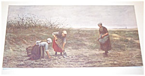 Farm & Country Scene Print: Women Working In The Filed