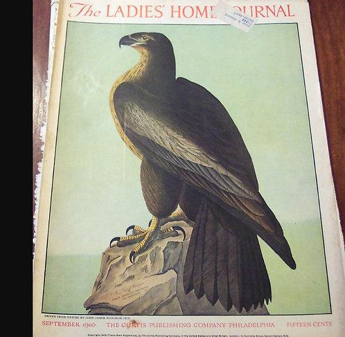 Early 1900's Vintage Ladies Home Journal Magazine Cover Art : Eagle Audubon