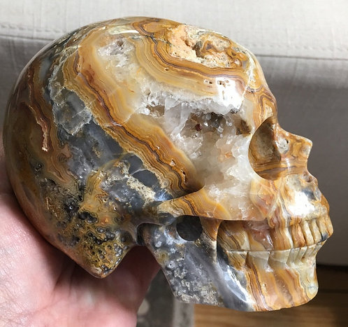 Large Druzy Crazy Lace Agate Skull - Tiny Amethyst Growing Inside