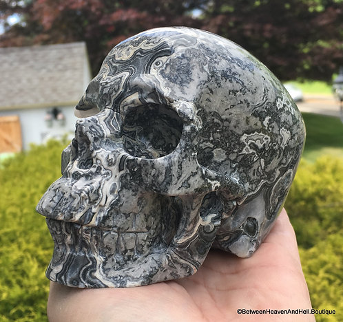 "5"" Large Picasso Jasper Activated Crystal Skull Past life work, Karma Clearing"