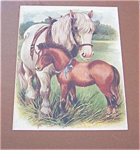 Antique & Vintage Prints: Farm ; Horses : Country