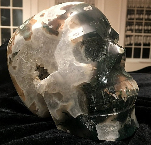 "6.1"" X Large Druzy Quartz Geode Moss Agate Crystal Skull - New Beginnings"