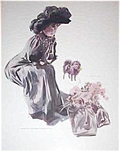 Antique Art: Print Victorian Lady Pomeranian Dog