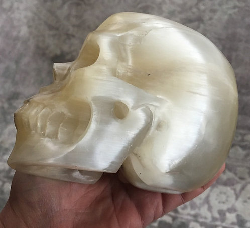 Large Activated Angelic Energy Selenite Crystal Skull, Raise your Vibration